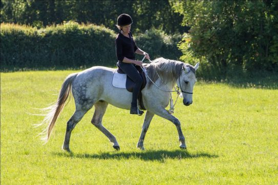 Maintaining Softness in the Saddle